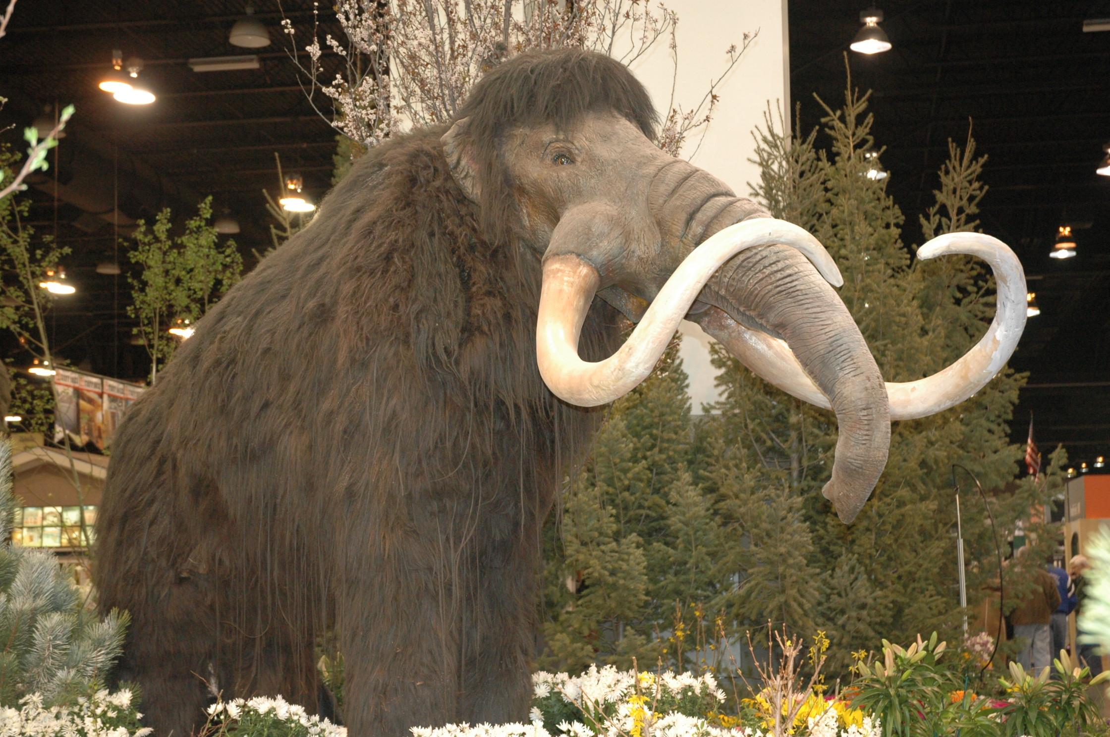 Only 4 More Days to See the Colorado Garden and Home Show | Outdoor ...