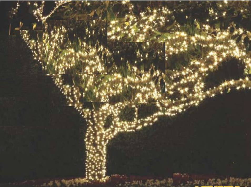 Perfect Permanent Tree Lighting