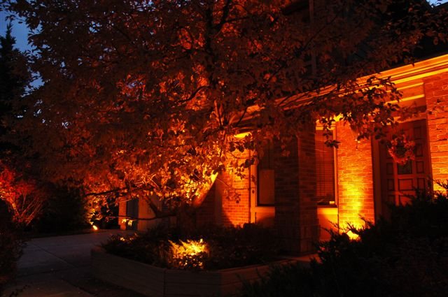 lighting effects with orange lens covers - Halloween Outdoor Lights